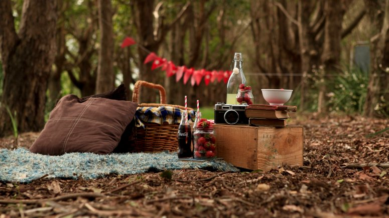 27310700-picnic-wallpapers